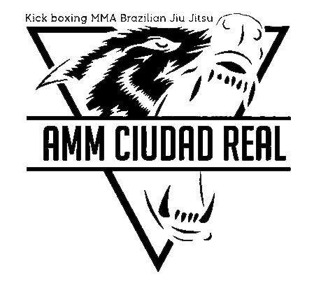 AMM Ciudad Real
